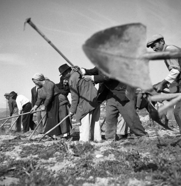 Calabria, 1950. © Federico Patellani