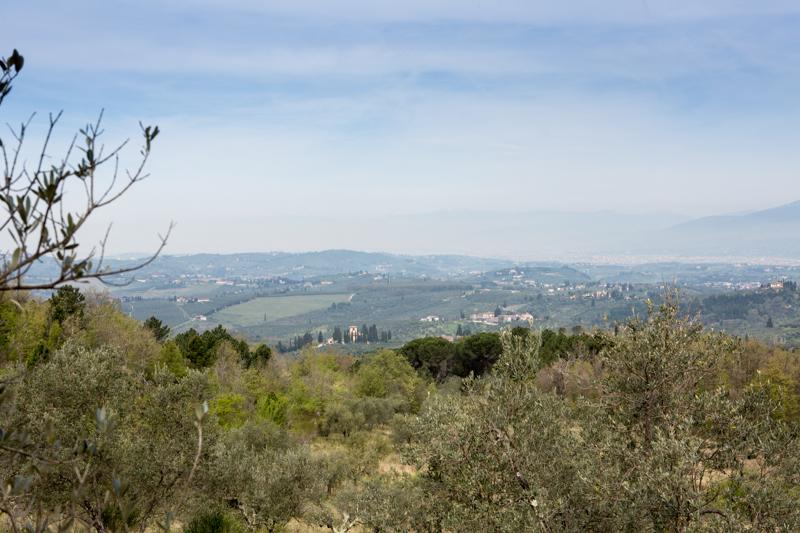 Mondeggi, aprile 2015. La collina di Mondeggi vista da sud-est. © Federico Barattini