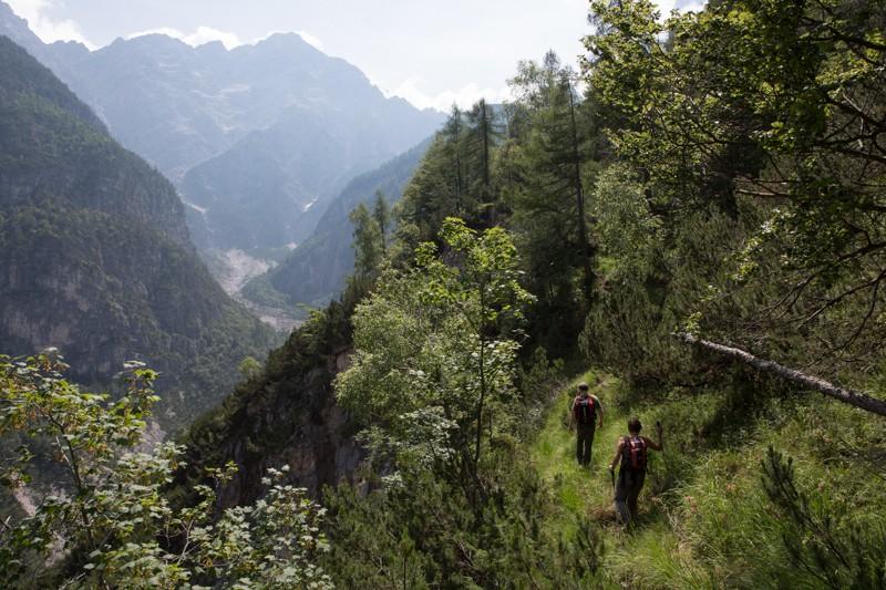 023__29A8285_wilderness