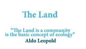 the-land-img-gallery