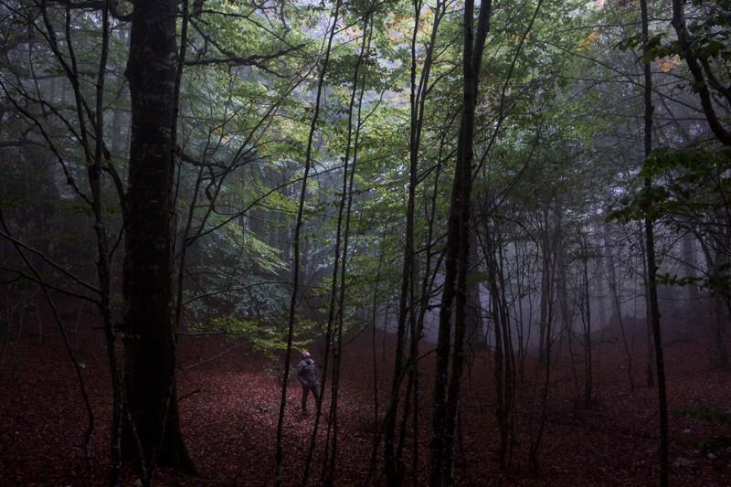 026__29A2644_wilderness