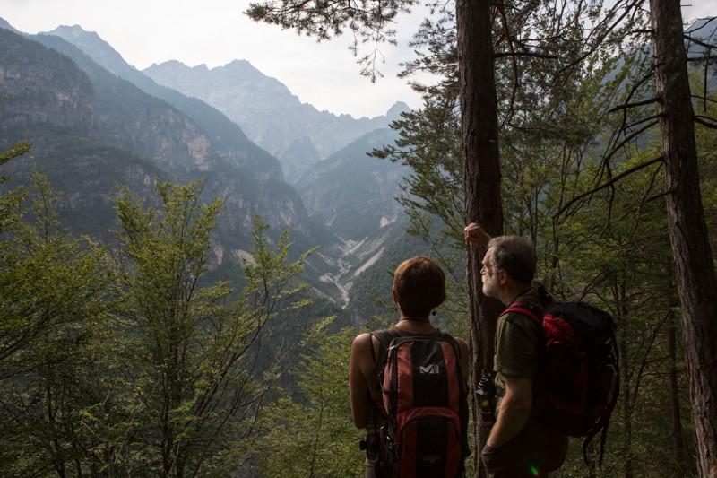 024__29A8134_wilderness